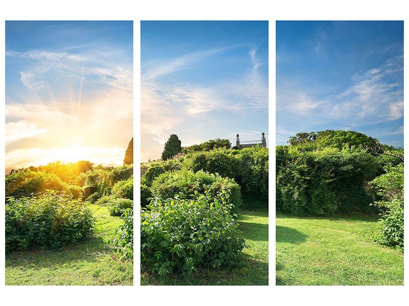 Leinwandbild 3-teilig Sonnenaufgang im Park