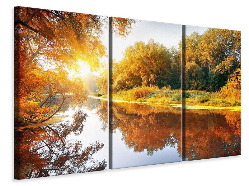 Leinwandbild 3-teilig Waldspiegelung im Wasser