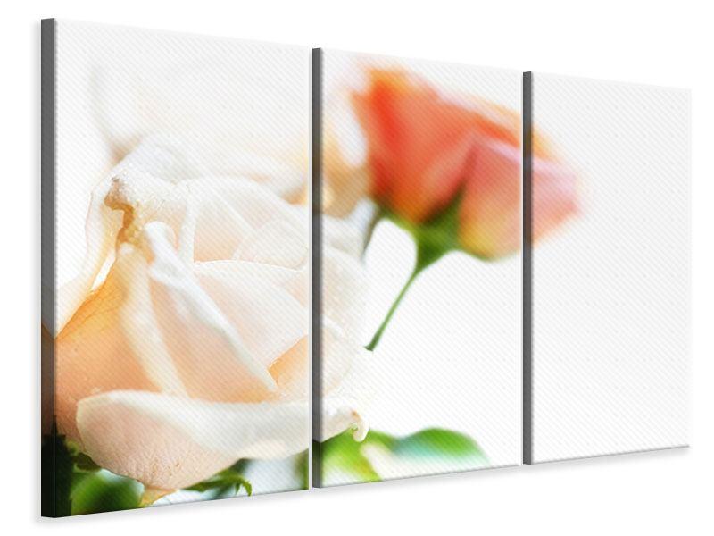 Leinwandbild 3-teilig Rosenperspektive