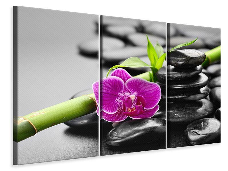 Leinwandbild 3-teilig Feng-Shui-Orchidee