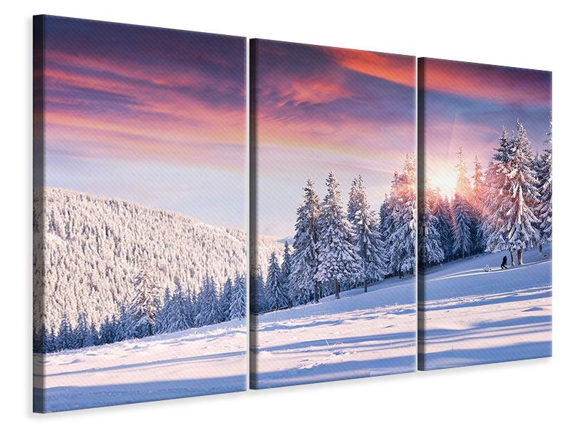 Leinwandbild 3-teilig Winterlandschaft