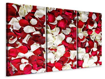 Leinwandbild 3-teilig Rosenblätter