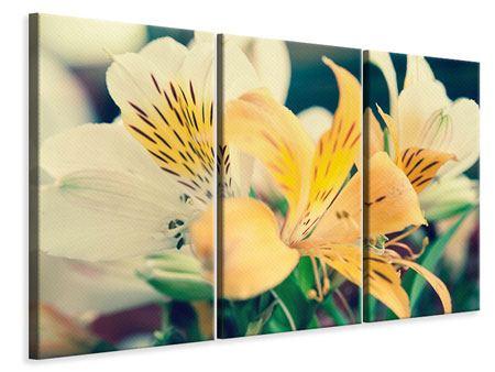 Leinwandbild 3-teilig Tigerlilien