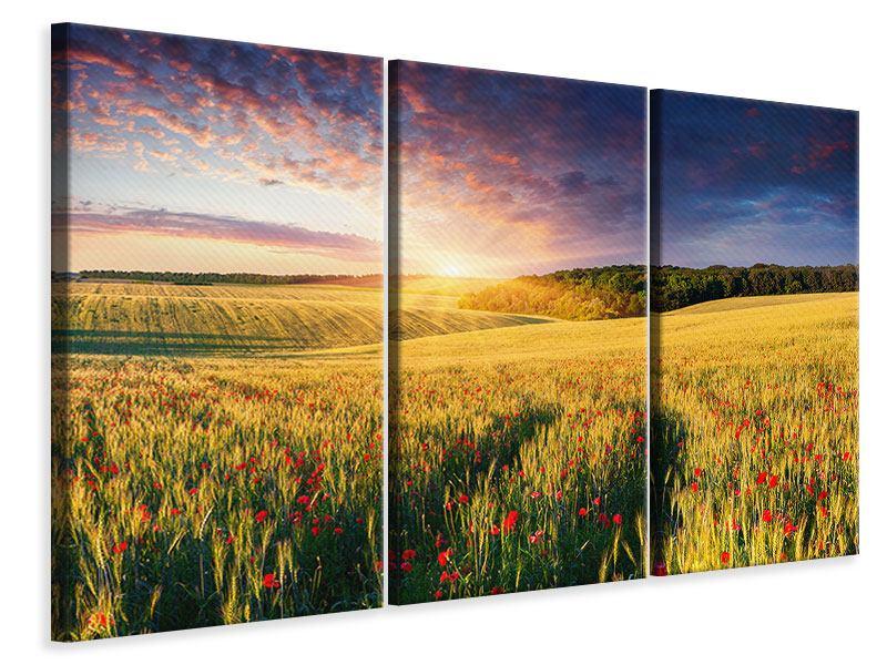 Leinwandbild 3-teilig Ein Blumenfeld bei Sonnenaufgang