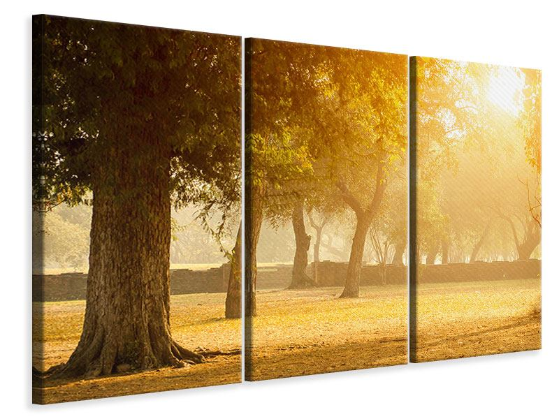 Leinwandbild 3-teilig Romantik unter Bäumen