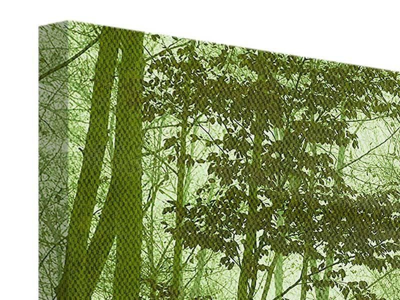 Leinwandbild 3-teilig Nibelungenwald