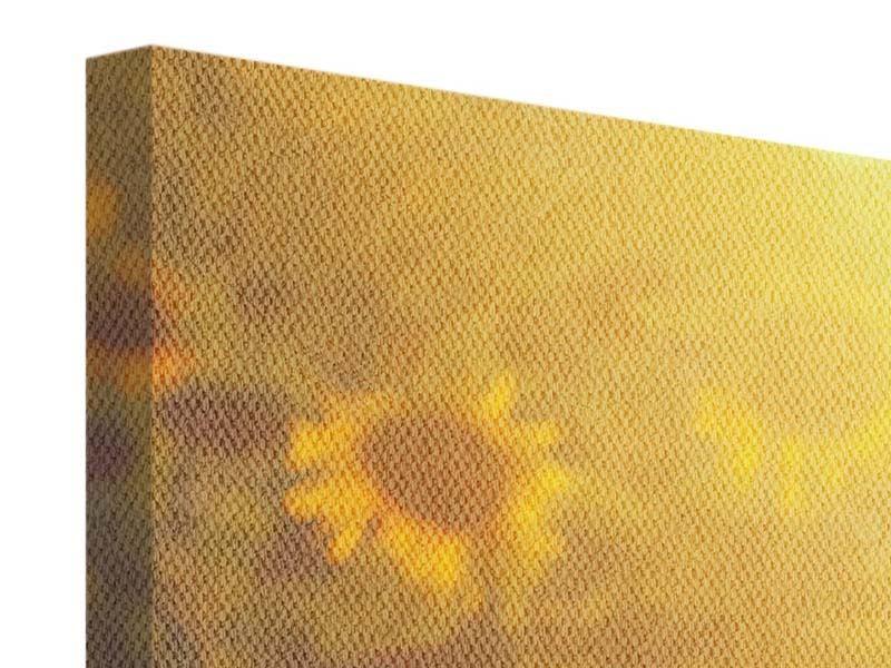 Panorama Leinwandbild 3-teilig Sonnenblumen im goldenen Licht