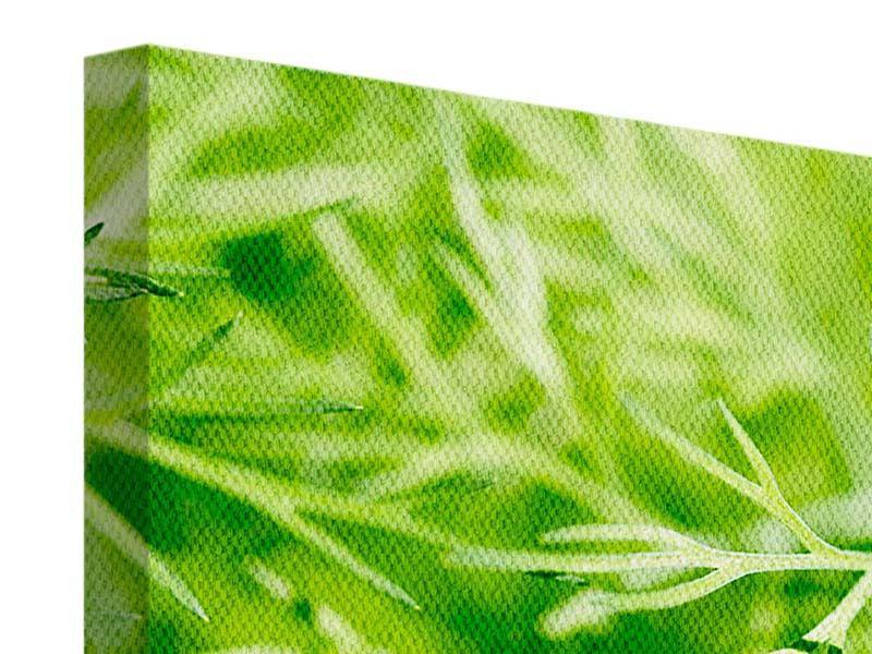 Panorama Leinwandbild 3-teilig XXL Dill