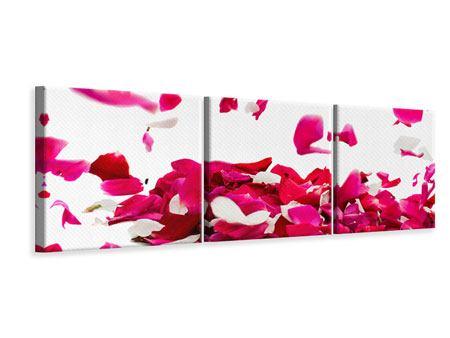 Panorama Leinwandbild 3-teilig Für mich soll`s rote Rosen regnen