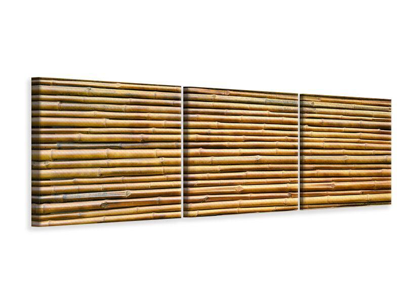 Panorama Leinwandbild 3-teilig Bambus