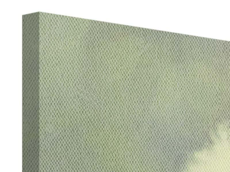 Panorama Leinwandbild 3-teilig Die Pusteblume