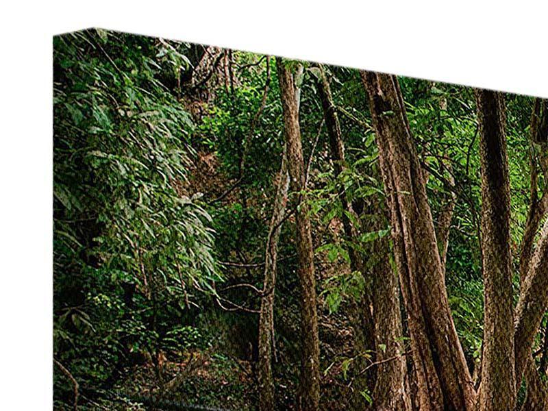 Panorama Leinwandbild 3-teilig Deep Forest