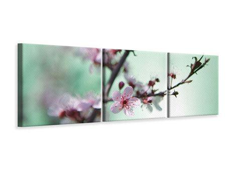 Panorama Leinwandbild 3-teilig Die japanische Kirschblüte