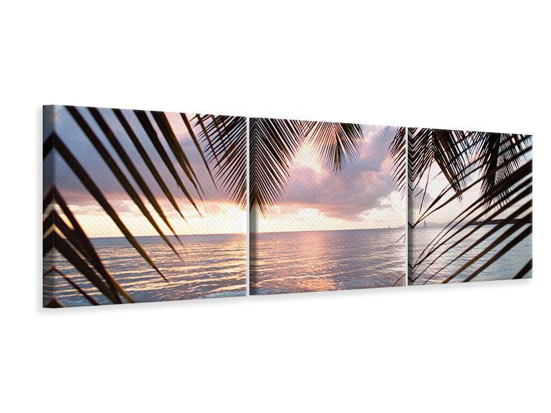 Panorama Leinwandbild 3-teilig Unter Palmenblätter