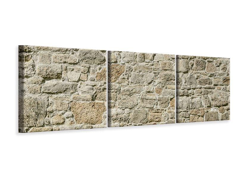 Panorama Leinwandbild 3-teilig Naturmauer