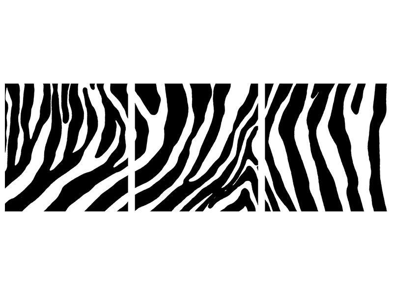 Panorama Leinwandbild 3-teilig Zebramuster