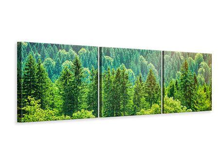Panorama Leinwandbild 3-teilig Der Waldhügel