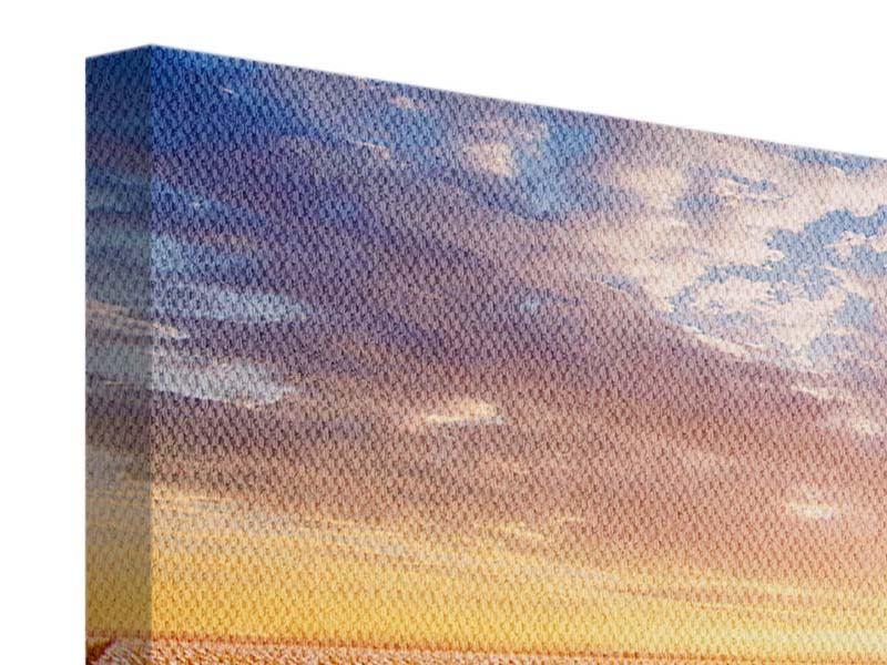 Panorama Leinwandbild 3-teilig Sonnenaufgang bei den Tulpen