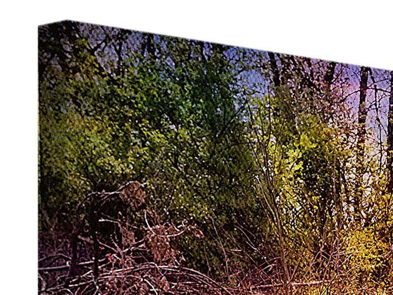 Panorama Leinwandbild 3-teilig Der Waldpfad