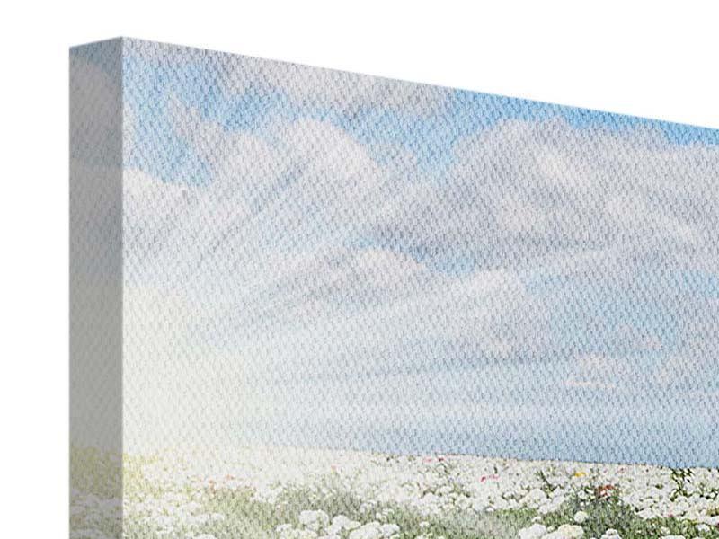 Panorama Leinwandbild 3-teilig Die Frühlingsblumenwiese