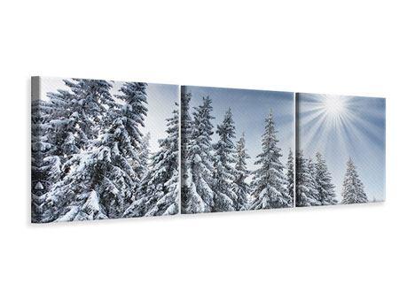 Panorama Leinwandbild 3-teilig Wintertannen