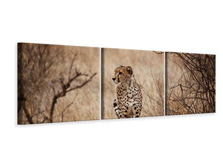 Panorama Leinwandbild 3-teilig Eleganter Gepard