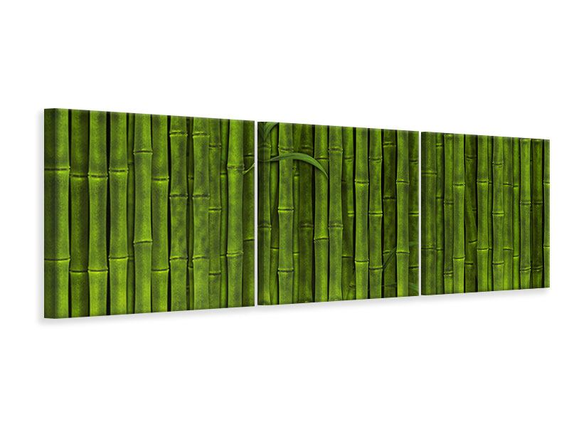 Panorama Leinwandbild 3-teilig Wasserspiegelung Bambus