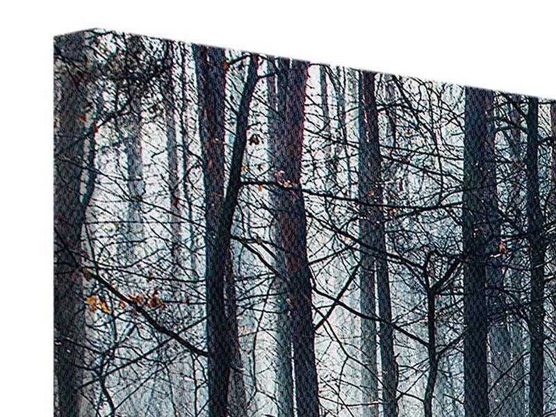 Panorama Leinwandbild 3-teilig Wald im Lichtstrahl