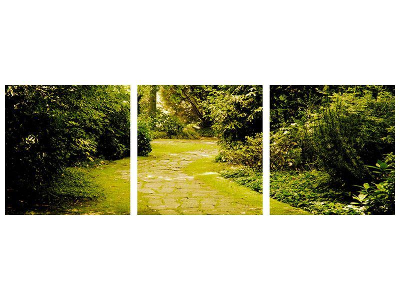 Panorama Leinwandbild 3-teilig Der bemooste Weg