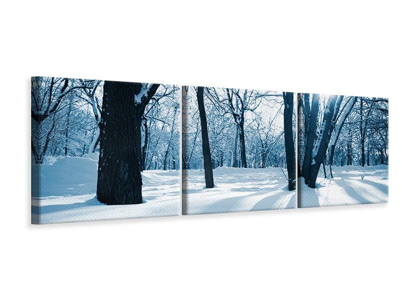 Panorama Leinwandbild 3-teilig Der Wald ohne Spuren im Schnee