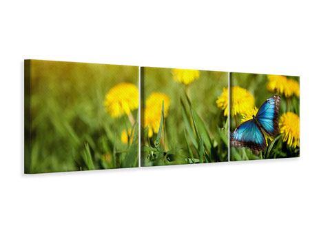 Panorama Leinwandbild 3-teilig Der Löwenzahn und der Schmetterling