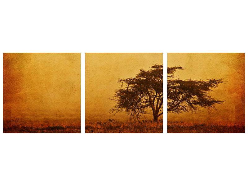 Panorama Leinwandbild 3-teilig Sonnenuntergangsstimmung