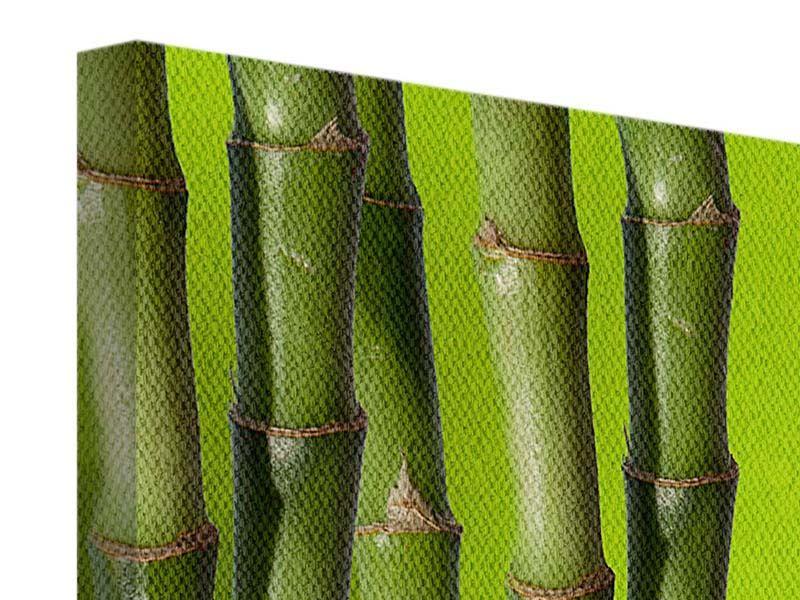 Panorama Leinwandbild 3-teilig Der Bambus