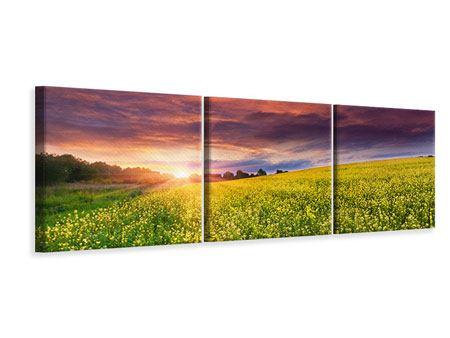 Panorama Leinwandbild 3-teilig Abenddämmerung