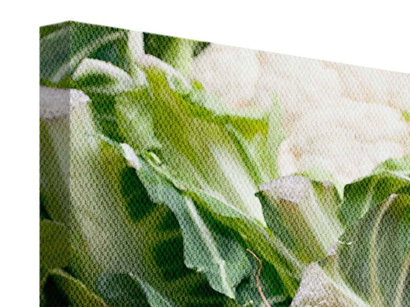 Panorama Leinwandbild 3-teilig Gemüse