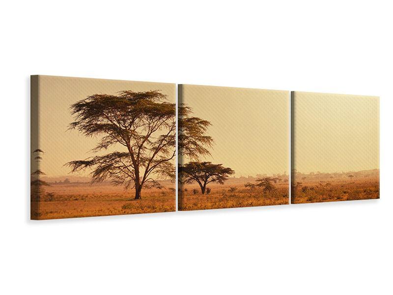 Panorama Leinwandbild 3-teilig Weideland in Kenia