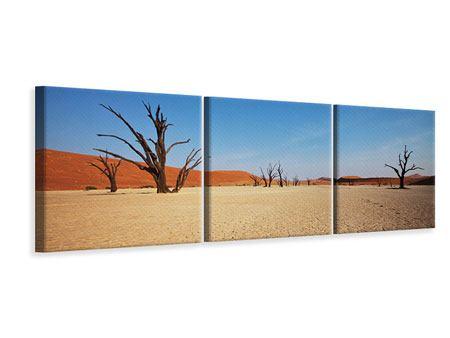 Panorama Leinwandbild 3-teilig Wüste