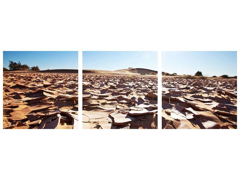 Panorama Leinwandbild 3-teilig Dürre