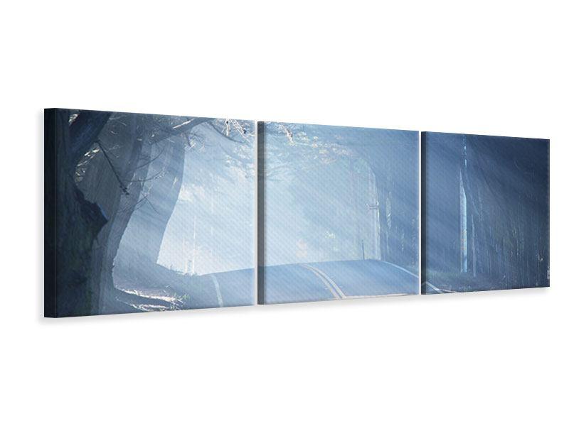 Panorama Leinwandbild 3-teilig Lichtdurchflutete Baumallee
