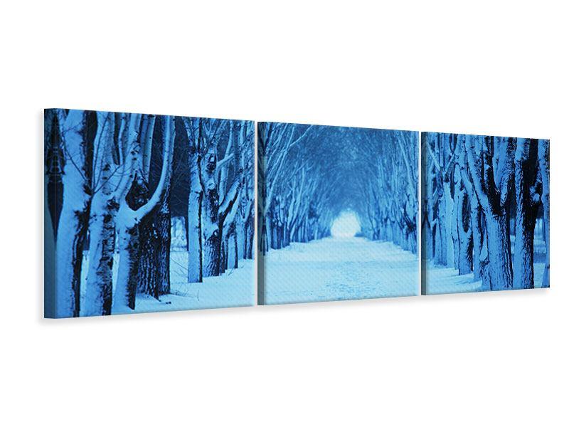 Panorama Leinwandbild 3-teilig Winterbäume