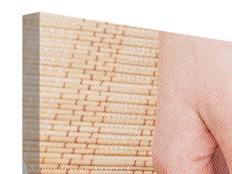 Panorama Leinwandbild 3-teilig Schöne Füsse