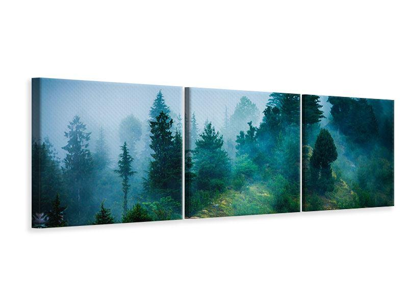 Panorama Leinwandbild 3-teilig Geheimnisvoller Wald