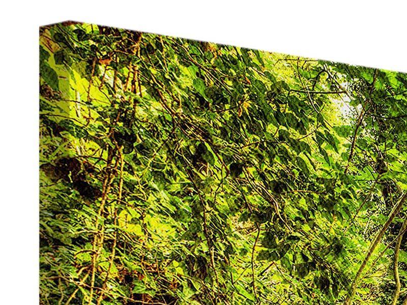 Panorama Leinwandbild 3-teilig Wasserfall im Wald