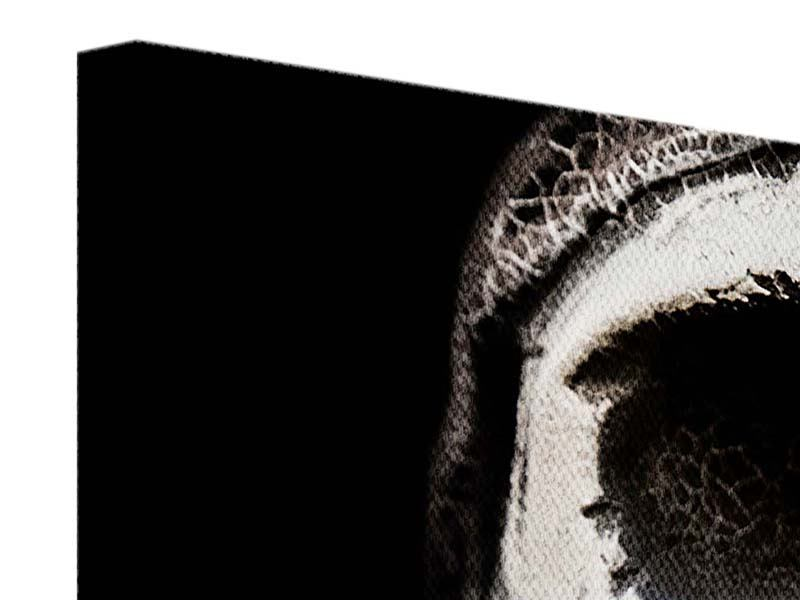 Panorama Leinwandbild 3-teilig Skull