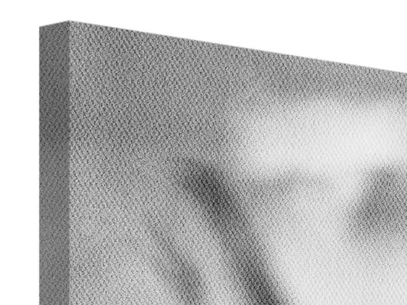 Panorama Leinwandbild 3-teilig Makro Lilienblatt