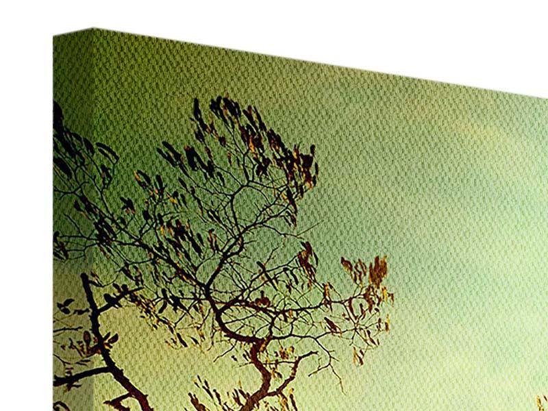 Panorama Leinwandbild 3-teilig Bäume im Herbst