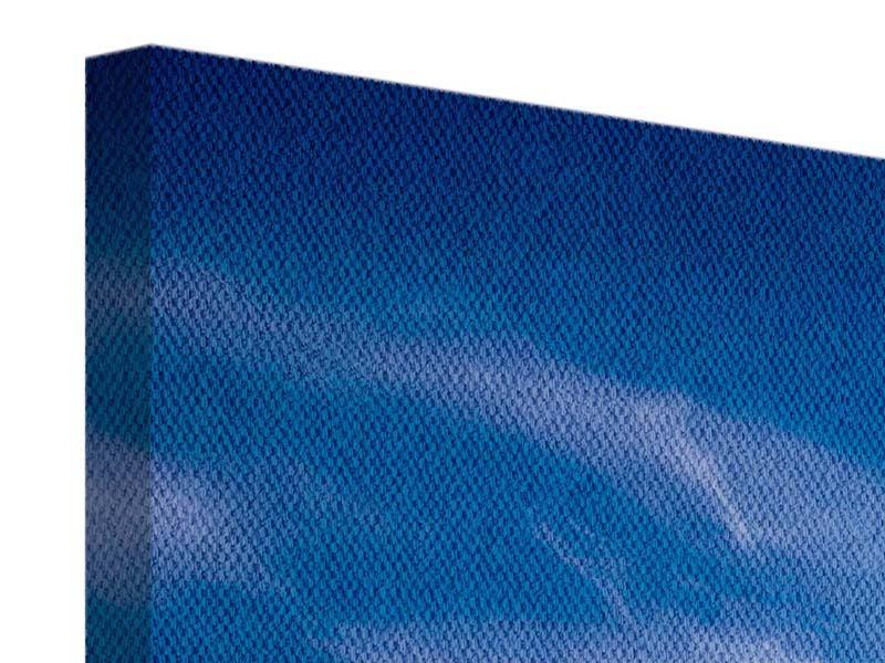 Panorama Leinwandbild 3-teilig Schleierwolken