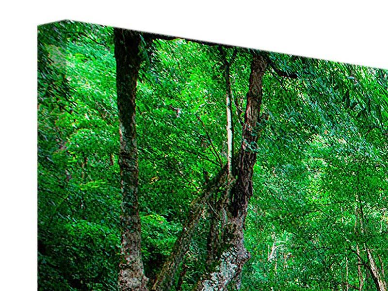 Panorama Leinwandbild 3-teilig Am Fusse von Erawan