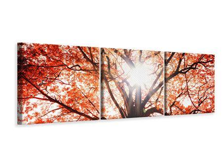 Panorama Leinwandbild 3-teilig Herbstlicht
