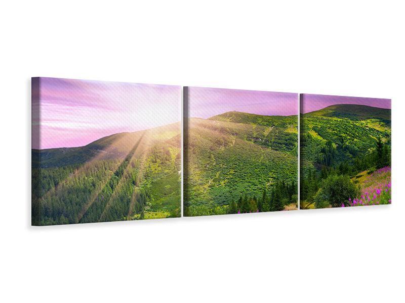 Panorama Leinwandbild 3-teilig Eine Sommerlandschaft bei Sonnenaufgang